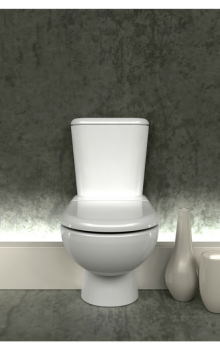 "What ""THE TOILET"" Taught Me"
