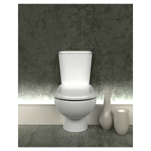 And now I'm not talking about THE TOILET. I'm talking about those things in our lives that remain the same. Those things we do just like we always have – whether it is healthy or good for us.